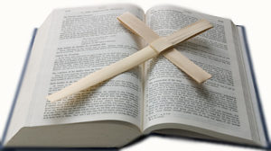 Palm Cross-Bible