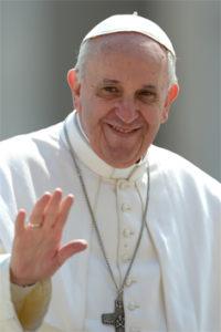 Pope Francis Vert