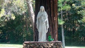 CTK Mary Statue