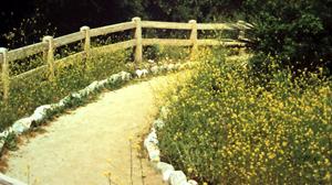 alan-phillip-path